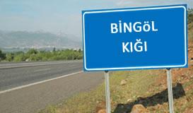 Bingöl - Kığı Elektrik Tesisi